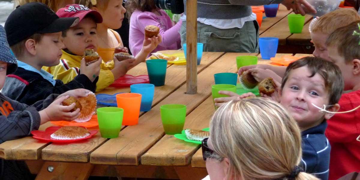 Funtasia Fun Park Fairmont - Kids